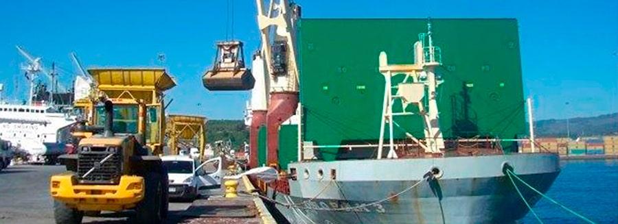 Servicio Portuario Neuling